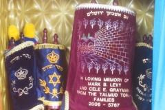 Torahs in the Jr Congregation